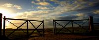 puertas+campo+Bitcoin