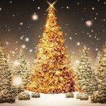 Los 12 días de Bitcoin (villancico navideño 2014)