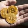 own-bitcoin