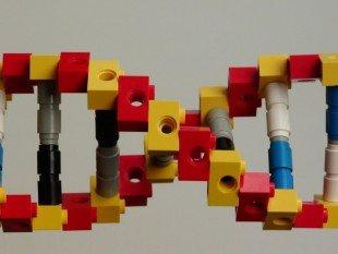 Lego_DNA