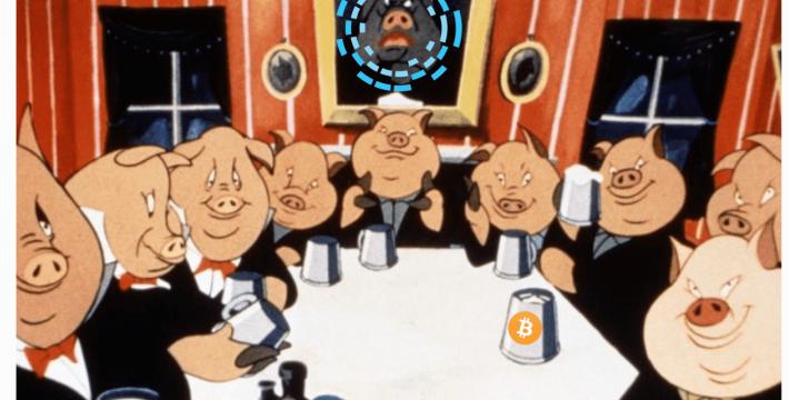 Blockstream-Pigs