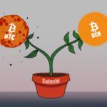 Breve historia de Bitcoin: nacimiento, muerte prematura y resurrección (segunda parte)